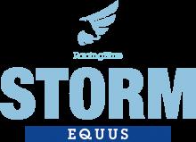 Логотип Storm Equus