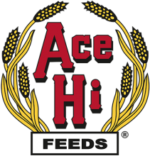 Логотип Ace Hi Feeds