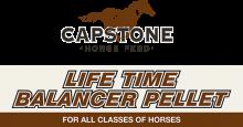 Логотип Capstone Life Time Balancer Pellet