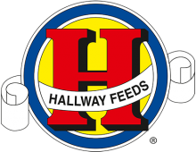 Логотип Hallway Feeds