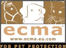 Логотип ECMA