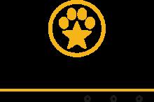 Логотип Star Mark