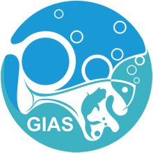 Логотип GIAS