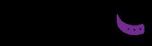 Логотип Salvo