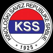 Логотип KSS