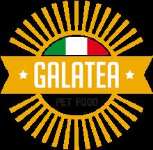 Логотип Galatea
