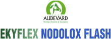 Логотип Audevard Ekyflex Nodolox Flash