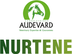Логотип Audevard Nurtene