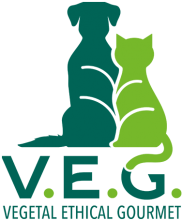 Логотип VEG