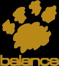 Логотип Balance