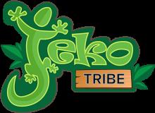 Логотип Jeko Tribe