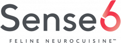 Логотип Sense6