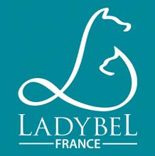 Логотип Ladybel
