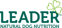 Логотип Leader