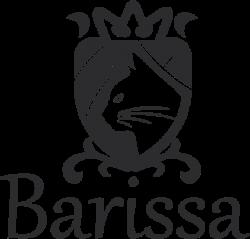 Логотип Barissa