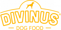 Логотип DIVINUS