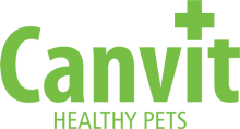 Логотип Canvit